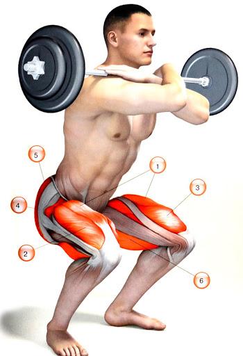 При вдигане на щанга с клекове трябва да пазите раменете си, като разширите захвата, ако усещате дискомфорт, освен това с клековете се развиват много добре квадрицепсите.
