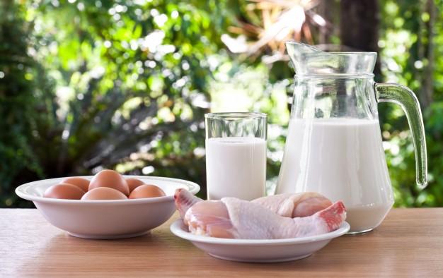 За ефективно отслабване трябва да си набавяте всеки вид храна - да се храните пълноценно