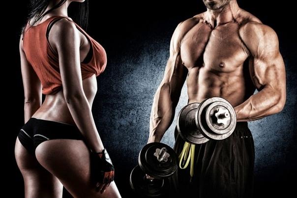 Правилна техника за изпълнение на упражненията за начинаещи във фитнеса.