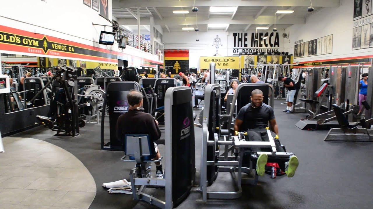 Gold's Gym е една от най-известните фитнес зали в света, в която се предлага и йога, зумба, пилатес, йога, художествена гимнастика и други.