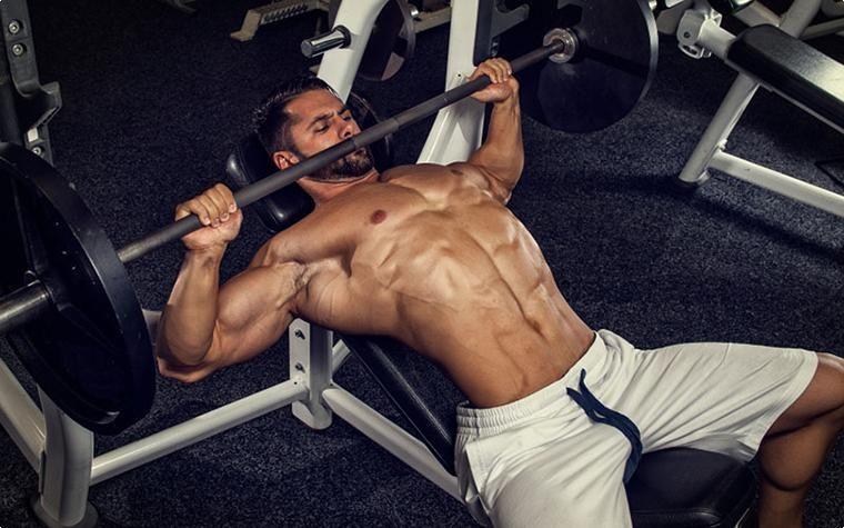 Упражнения за начинаещи в бодибилдинга за гърди - на пейка, лежанка.