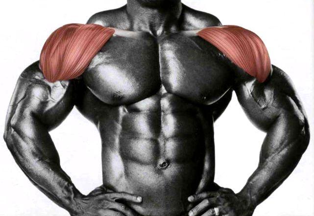 Седмичен план за тренировка за рамене.